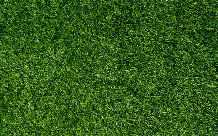 Scarica Sfondi Verde Erba Texture Verde Prato Erba Sfondo