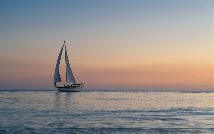 white sailboat, sunset, seascape, evening, beautiful evening sky, white yacht