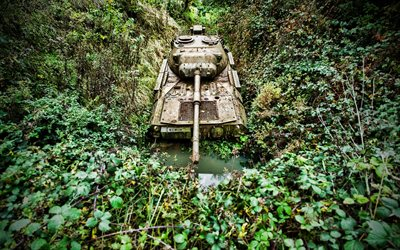 abandoned tank, jungle, thickets, armored vehicles, tanks, military equipment