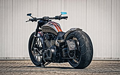 Harley-Davidson Thunderbike, Custom Motorcycles, cool bike, rear view, tuning, american motorcycles, chopper, Harley-Davidson
