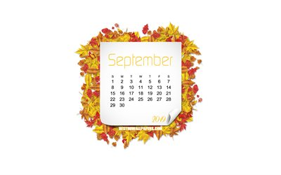 September 2019 Calendar, autumn leaves, white background, autumn frame, 2019 September Calendar, creative art
