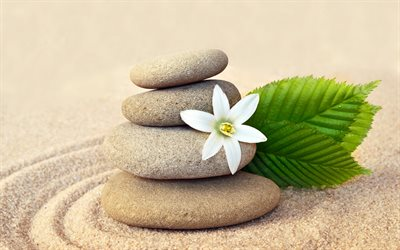 polished stones, sand, spa, white flower, circles on the sand