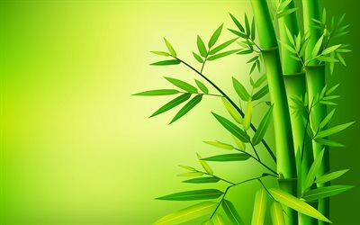 bamboo sticks, macro, bambusoideae sticks, 3D art, green bamboo, bamboo canes, background with bamboo, bamboo