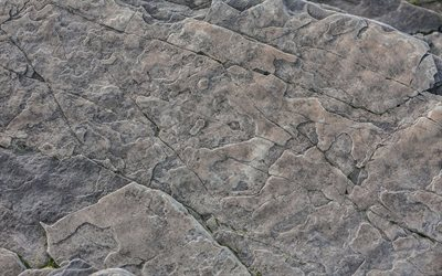 gray stone texture, natural rock texture, gray rocks, macro, gray stones, stone backgrounds, gray stone, stone textures, gray backgrounds