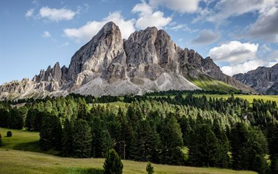 Dolomites, Alps, spring, mountain landscape, rocks, Italy, forest, green trees, save the planet