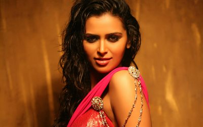 Meenakshi Dixit, portrait, indian actress, brunette, Bollywood