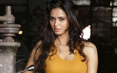 Meenakshi Dixit, Indian actress, beautiful girl, brunette, look