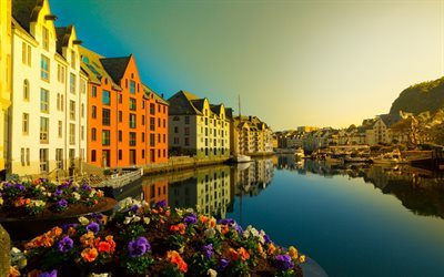 Aalesund, river, canal, petunia, Norway, More og Romsdal