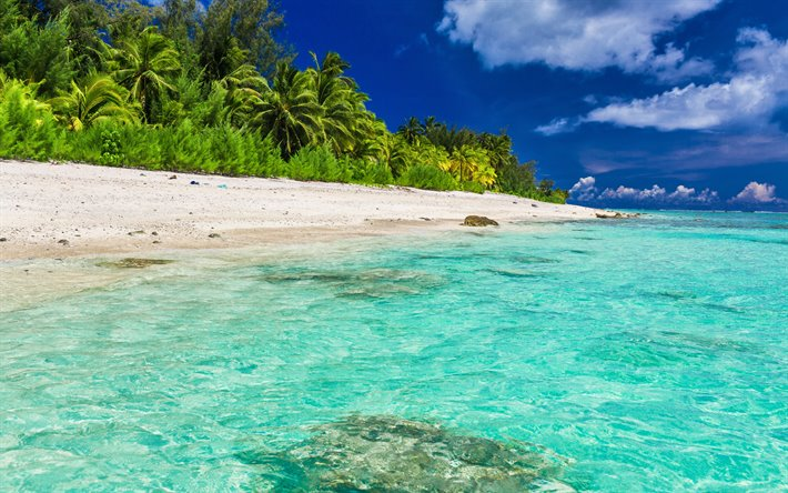 Download Wallpapers Tropical Island Beach Ocean Cote D