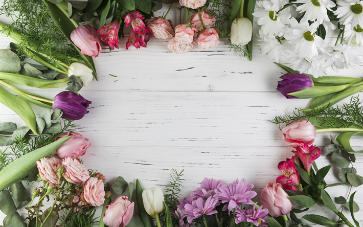 frame of tulips, flower frame, various tulips, spring, beautiful spring flowers, tulips, light wooden background