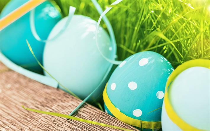 Ostern Hintergrundbilder Kostenlos herunterladen hintergrundbild ostern blau eier grün gras