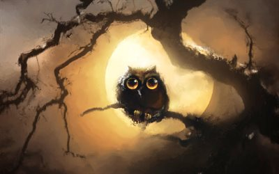 Owl at night, wildlife, moon, night, predatory bird, Owl, Strigiformes