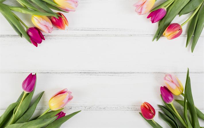 Flower Wallpaper Flower Frame White Background