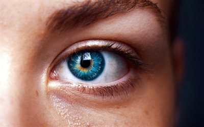 blue female eye, beautiful eyes, face, blue eyes, macro eye
