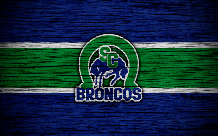 4k, Swift Current Broncos, logo, WHL, hockey, Canada, emblem, wooden texture, Western Hockey League