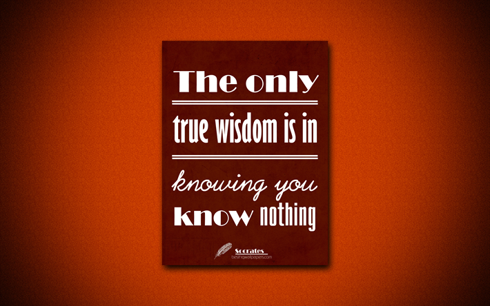 4k, The only true wisdom is in knowing you know nothing, Socrates, orange paper, popular quotes, inspiration, Socrates quotes, quotes about wisdom
