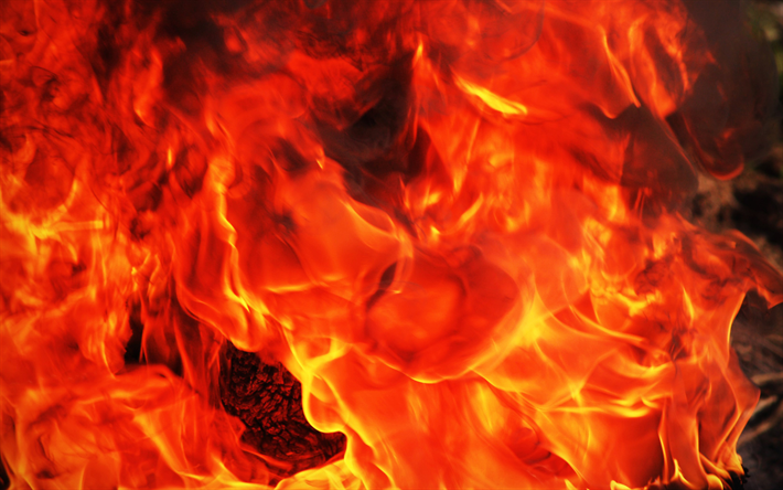 fire flames, macro, orange flames, bonfire, orange fire texture