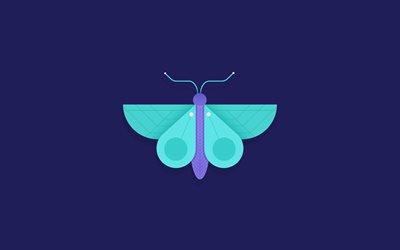 blue butterfly, creative, art, minimal