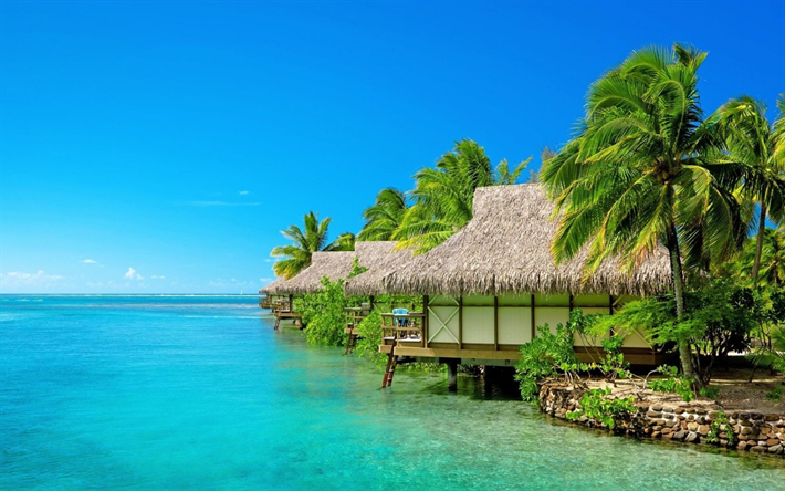 Maldives, Tropical islands, beach, palms, travel, rest, summer, tropics