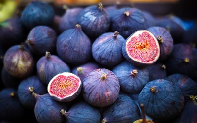 figs, berries, fruits