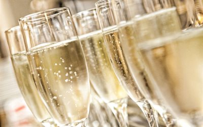 champagne, glass glasses, background with champagne, drinks, champagne in glasses