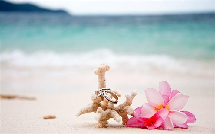 Wedding Rings Sand Beach On Islands Pink Flowers