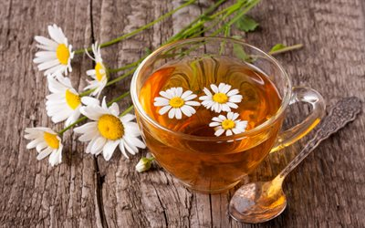 tea with chamomile, glass cup, daisy petals, cup of tea