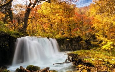 waterfall, autumn forest, yellow trees, autumn, river, yellow leaves