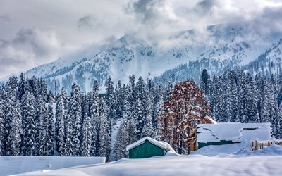 winter, mountain landscape, forest, snow, Alps, snow-covered mountains, fog