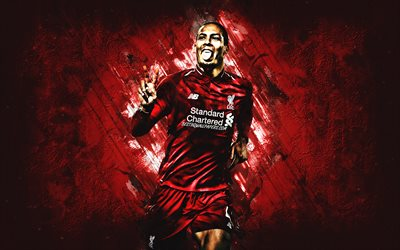 Virgil van Dijk, néerlandais joueur de football, portrait, Liverpool FC, rouge, fond, football, Premier League, Angleterre