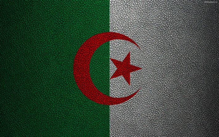 Download Wallpapers Flag Of Algeria Leather Texture 4k