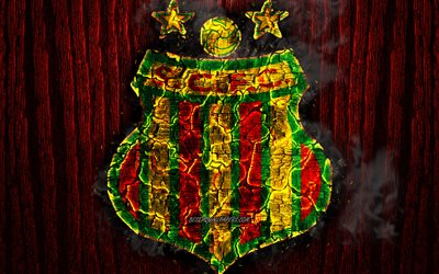 Download Wallpapers Sampaio Correa Fc Scorched Logo Serie B Red Wooden Background Brazilian Football Club Sampaio Correa Grunge Football Soccer Sampaio Correa Logo Fire Texture Brazil For Desktop Free Pictures For Desktop