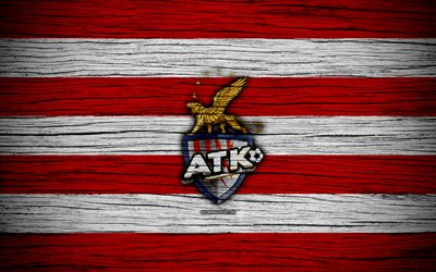 ATK FC, 4k, l'Indian Super League, le football, l'Inde, club de football, ISL, ATK, texture de bois, le FC ATK