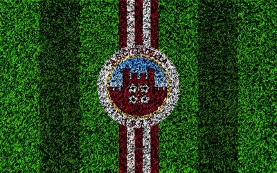 AS Cittadella, 4k, football lawn, italian football club, logo, purple white lines, grass texture, Serie B, Cittadella, Italy, football, Cittadella FC