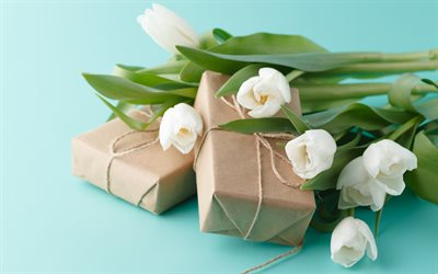white tulips, spring flowers, gifts, tulips, background with tulips, package