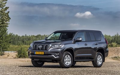 Toyota Land Cruiser Challenger, 4k, offroad, 2019 cars, SUVs, 2019 Toyota Land Cruiser Prado, japapese cars, Toyota