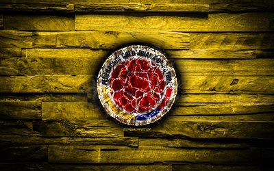 Colombia, burning logo, Conmebol, red wooden background, grunge, South America National Teams, football, Colombian soccer team, soccer, Colombia national football team