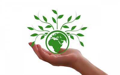 take care of the planet, Earth, eco concepts, take care of Nature, Save Earth, white background, earth in the palm of hand