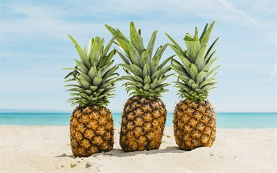 pineapples on the sand, beach, seascape, pineapples, tropical islands, summer concepts, summer travels