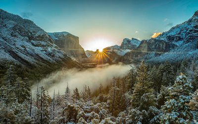 mountain landscape, morning, sunrise, fog, forest, Yosemite National Park, Sierra Nevada, California, USA