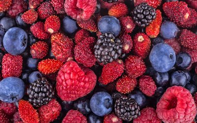 raspberries, blackberries, strawberries, blueberries, berries, food textures, fresh fruits