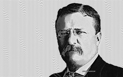 Theodore Roosevelt, 26th US President, portrait, art, American president, USA