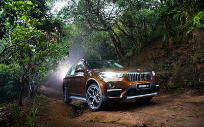 BMW X1, offroad, 2018 cars, crossovers, new X1, forest, BMW