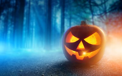 Halloween, October 31, pumpkin, forest, night, light