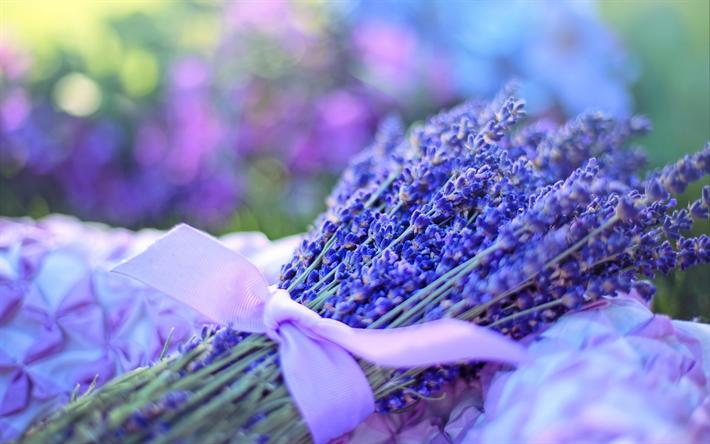Scarica sfondi lavanda fiori di campo porpora profumo for Fiori di lavanda