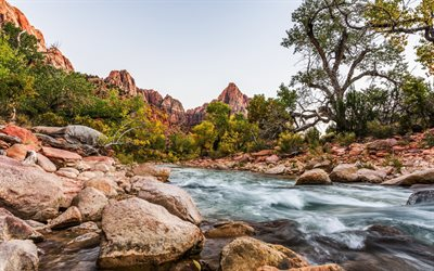 mountain river, mountain landscape, stones, sunset, USA, Utah, Zion National Park