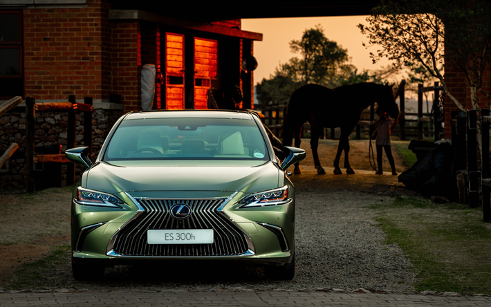 Download Wallpapers Lexus ES, 300h, 2018, Front View