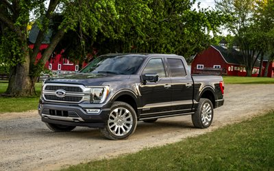 Ford F-150, 2021, F-series, black pickup truck, exterior, front view, new black F-150, american cars, Ford