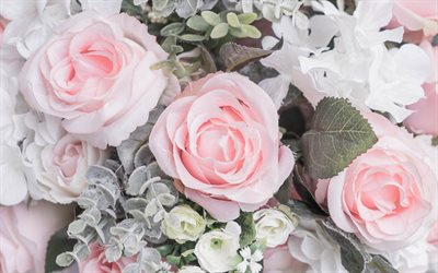 pink roses, beautiful pink flowers, bouquet of roses