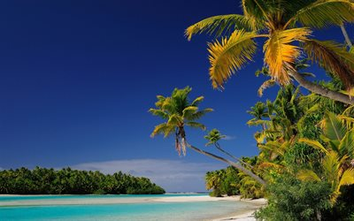 Aitutaki, tropical islands, palm trees, beach, Oceania, Cook Islands, azure lagoon, Araura and Utataki